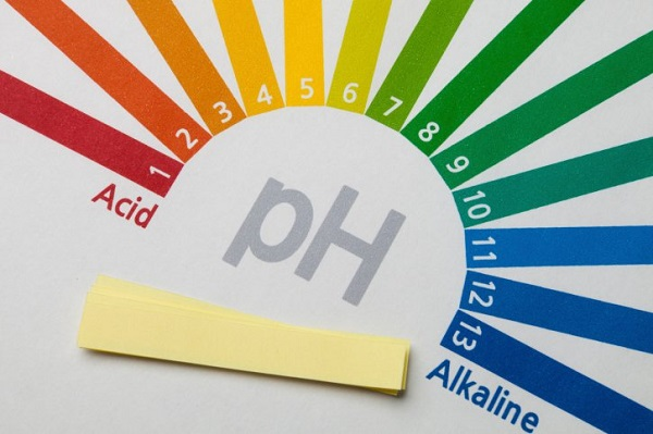 Chỉ số pH có thể nhận diện bằng giấy quỳ tím