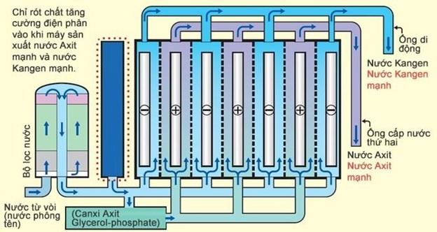 Máy lọc nước điện giải Kangen leveluk super 501