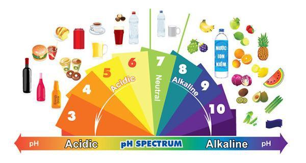 Bảng các thực phẩm tính kiềm và axit